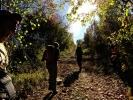 Пејсажне композиције ватрене јесени ће се побринути да нас успоре :-)