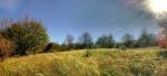 До врха прелазимо још пар ливада, а потом улазимо у шуме, све до Остреча