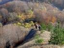 Иначе, овде су фотке са више акција, ова је новембарска, што се примећује по вегетацији