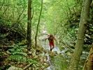 Био је то необичан сплет кретања по води и кроз шуму