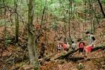 Пролазак шумском стазом до другог теснаца трајаће 2 сата