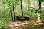 А ево и клупе где правимо паузу да бисмо јели и сакупили се