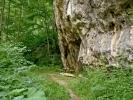 Макадамом до Дунава, тј. села Брњица, предстоји још 40-ак минута хода