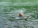 И сада би било пријатно остати у Дрини јер је топлија, али она НОСИ!