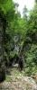 Поглед на наставак кањонског ходника