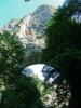 Током лета, мостове мало заклања вегетација...