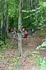 Кроз предивне Ртањске шуме