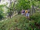 И уђосмо у шуму