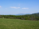 преко пространих ливада које су сада најзеленије БАШ ТУ