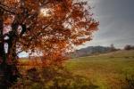 На путу ка Кунуни, јесен је заводила најбоље како може
