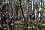Еее, до извора Ресаве морали смо се држати збијених редова јер је шума веома густа