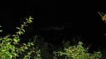 Бела Паланка светли