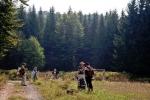 Свуд около су чаробне шуме, лако можете бити зачарани, е да не би, ДРЖИМО СЕ ПРАВИЛА КОЛОНЕ