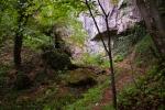 Пут десно од водопада води у Мијуцића пећину