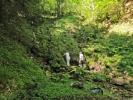 ...а ту су и Данилова врела, са којих је вода више цурела него текла, а иначе су врло раскошни у ово доба године
