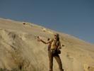 Дине (камилу ћу на копи/пејст)